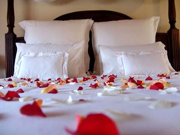 Hoa hồng có gai vật kiêng kị đặt trong phòng cưới