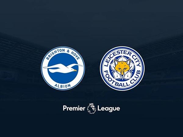 Nhận định kèo Brighton vs Leicester, 22h00 ngày 23/11