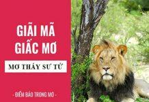 Nằm mơ thấy sư tử đánh con gì ăn chắc, có điềm báo gì